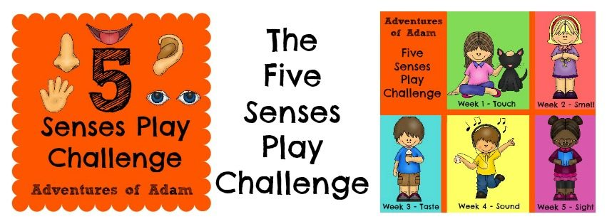 Five Senses Play Challenge