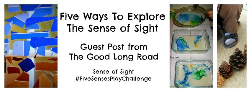 Five Ways To Explore The Sense of Sight
