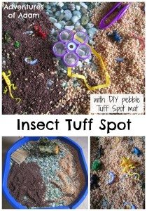 Insect Tuff Spot