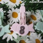 Adventures of Adam Numbered bird pegs