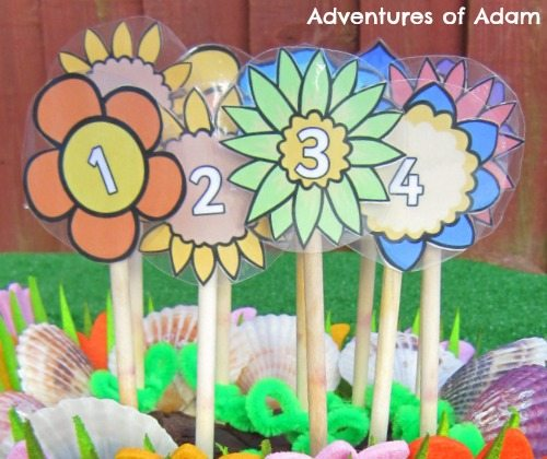 Adventures of Adam Numbered flowers