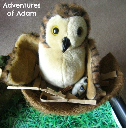 Adventures of Adam Owl Babies Puppet