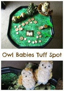 Owl Babies Tuff Spot Adventures of Adam