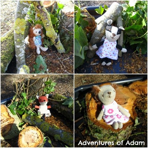 Adventures of Adam Woodland creatures tuff spot