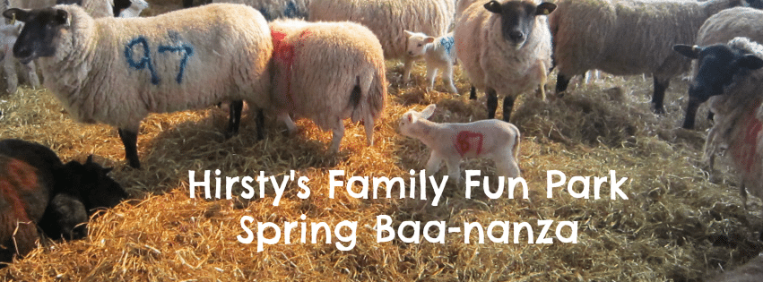 Adventures of Adam Hirsty's Family Fun Park Spring Baa-nanza