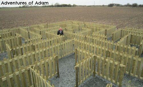 Adventures of Adam Wooden maze at Hirsty's Family Fun Park