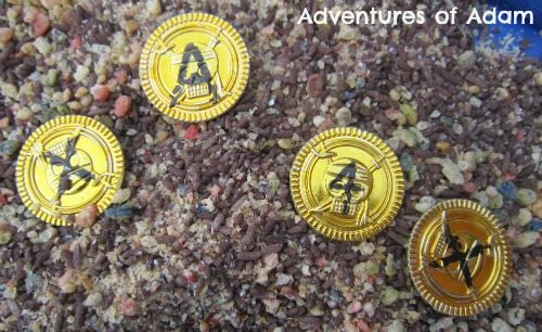Adventures of Adam X marks the spot coins