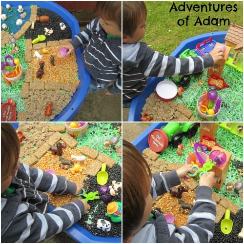 Adventures of Adam Fine motor skills farm tuff spot