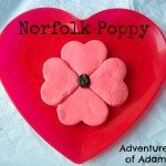 Adventures of Adam Norfolk Poppy