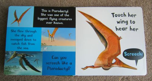 Touch and hear dinosaur book