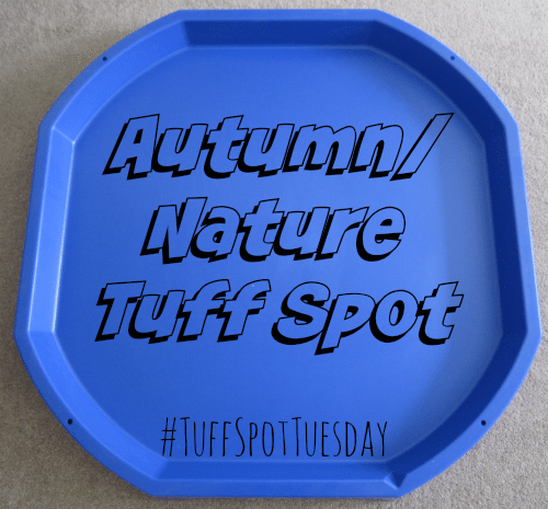 Adventures of Adam Autumn Nature Tuff Spot