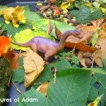 Adventures of Adam Dinosaur Tuff Spot using leaves