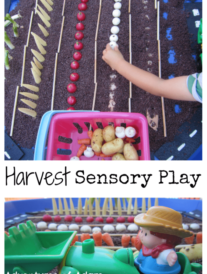 Adventures of Adam Harvest Sensory Play Tuff Spot