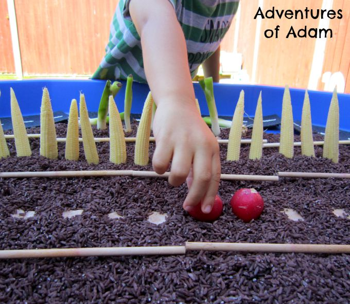 Adventures of Adam Planting vegetables sensory play