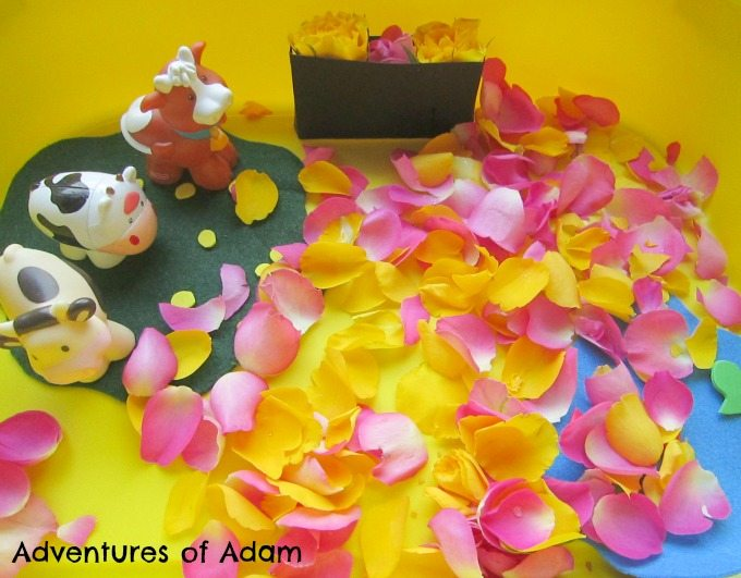Adventures of Adam Petal sensory bin