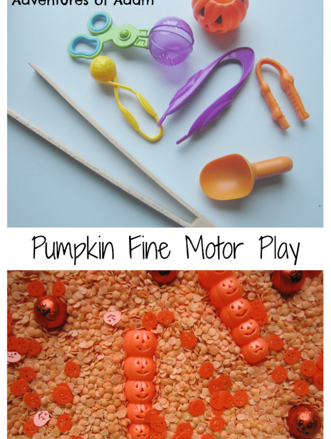 Pumpkin Fine Motor Play