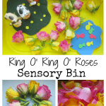 Adventures of Adam Ring O Ring O Roses Sensory Bin