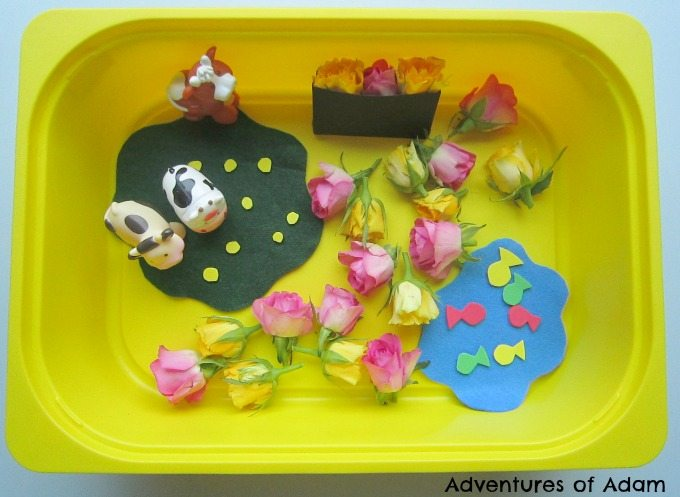 Adventures of Adam Ring O Ring O Roses Sensory Bin Adventures of Adam