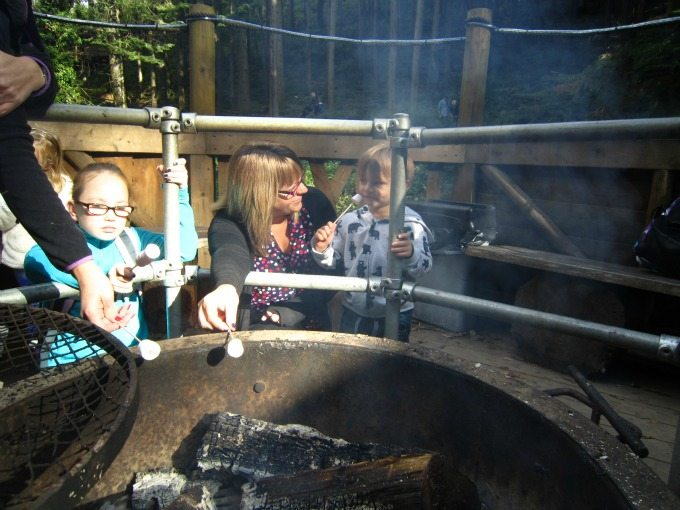 Toasting marshmallows at Bluestone