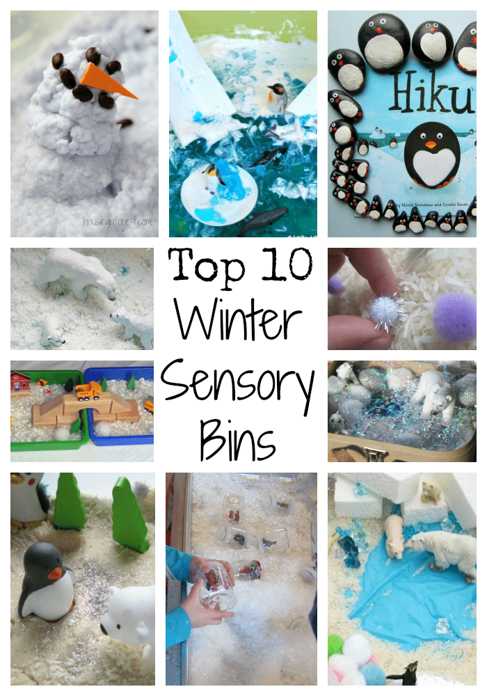Top 10 Winter Sensory Bins