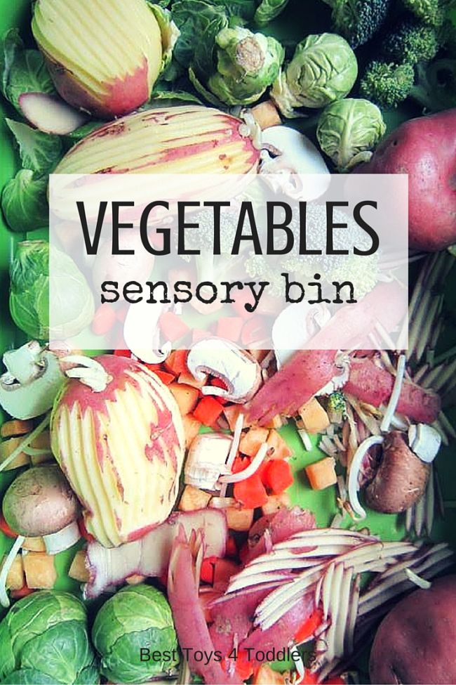 VEGETABLES-sensory-bin