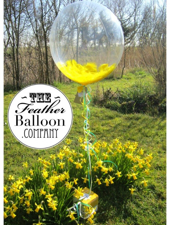 The Feather Balloon Company + WIN