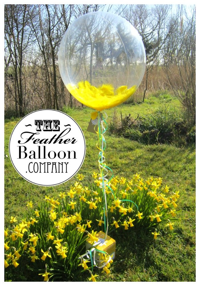 The Feather Balloon Company Review