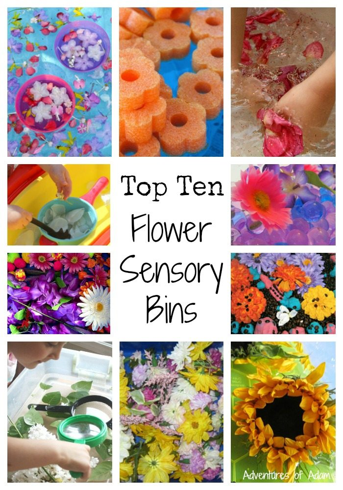 Top Ten Flower Sensory Bins