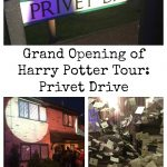 Grand opening of Privet Drive