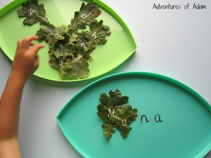 Letter recognition using leaves