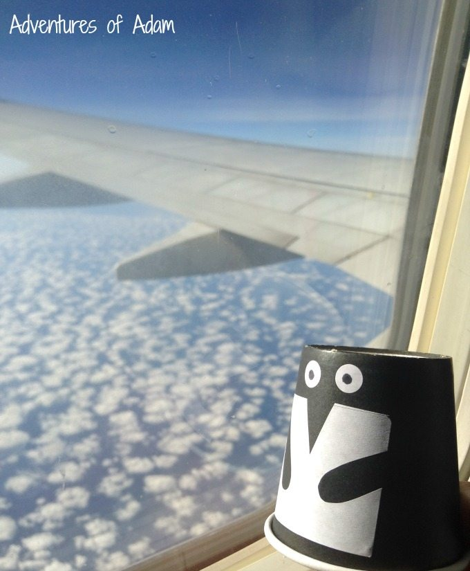 365 Penguins on a plane