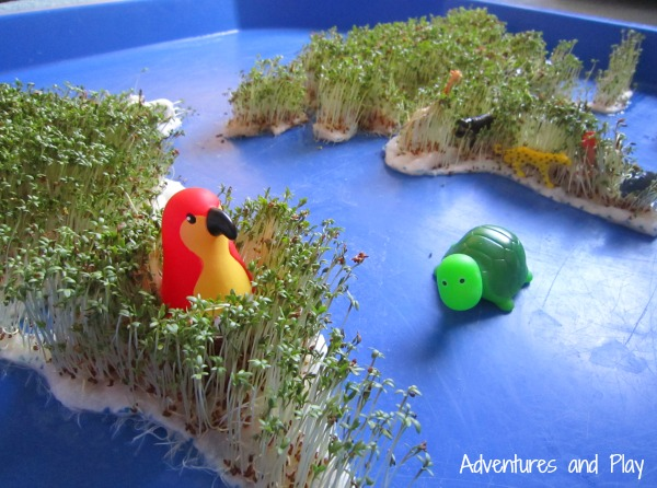 World animals sensory play