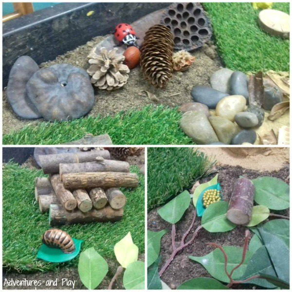 Life cycle of a ladybird sensory play