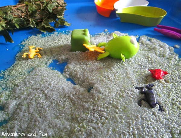 Life cycle of the frog sensory play
