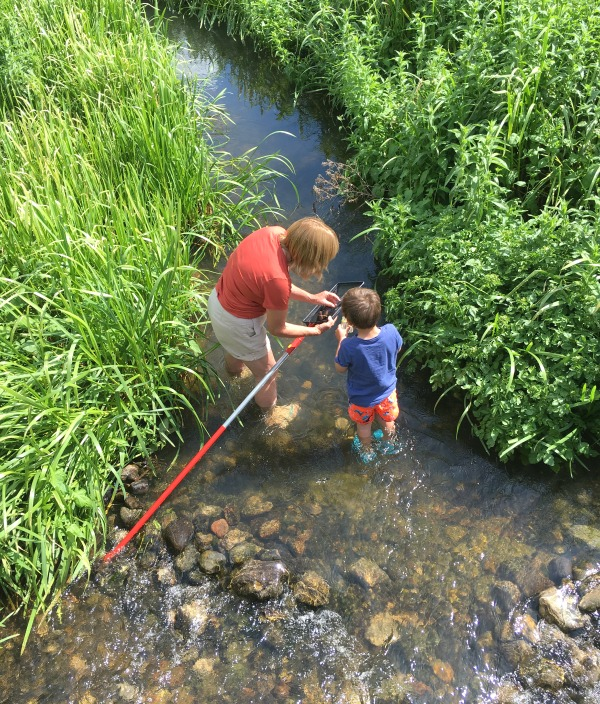 Pond dipping North Norfolk