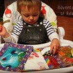 Adventures of Adam sensory bags