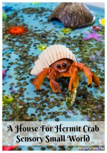 Build A House For Hermit Crab Sensory Small World